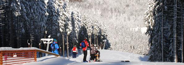 Ski Alpin Erlbach, Ski Alpin Sachsen, Skigebiet Sachsen, Skigebiet Erzgebirge, Skigebiet Erlbach Kegelberg